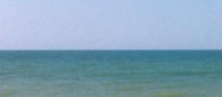 The flat horizon: As far as the eye can see.